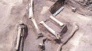 Huesos encontrados